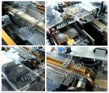 Упаковочная машина для шоколадной упаковки (DZB300)