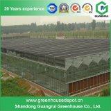 Casa verde de vidro de baixo preço para o vidro comercial da estufa da agricultura