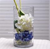 De duidelijke Acryl Ronde Vaas van de Decoratie van de Vaas (btr-Q8069)