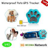 Perseguidor impermeável do GPS do animal de estimação de IP66 3G com colar (V40)