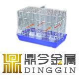 Mascota de la jaula de pájaros de hierro forjado.