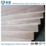 AAA Grado 4mm Okume Commercial Plywood para muebles