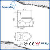 Ванная комната влаги цельный шкаф керамические туалет (В7299)