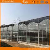 Multi-Span serre en verre pour l'Académie de Qingdao