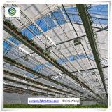 Туннель цветы растущей Multi Span стекла выбросов парниковых газов с помощью системы гидропоники