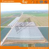 고품질 Venlo 구조 유리 온실