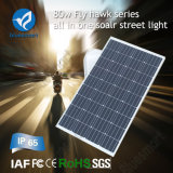 Innovative Lighting Calle 15W-80W LED solar al aire libre de BlueSmart