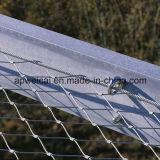 反落ちるネットのためのステンレス鋼ワイヤーロープのネット