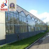 Multi Überspannungs-Polycarbonat-Blatt-Gewächshaus