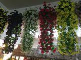Les meilleures fleurs artificielles de vente de Gu-Zj0001vyp