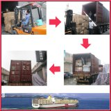 리스본, 포르투갈에 중국에 있는 출하 Agent