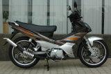 Motorcycle (GW110-3)
