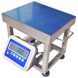 Large LED Weighing Indicator를 가진 전자 Chicken Weigh Scale