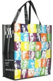 Sacchetto di acquisto/borsa rivestita/nuovo sacchetto del Portable di Styly