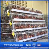 Jaula fuerte y durable del pollo para la venta