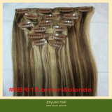 Remy Hair Extensions (C-07)の人間のHair Extension Mixed Color Clip