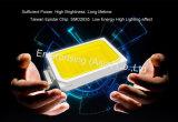 Et21 크롬 홍조 마운트 Dimmable 펀던트 점화 LED 천장 빛