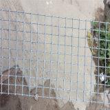 Rete metallica saldata galvanizzata galvanizzata/calda dell'elettrotipia di buona qualità
