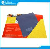 Drucken-farbenreiches Papierdarstellungs-Faltblatt