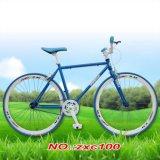 Erwachsenes Fahrrad/Moutain Bicycle/BMX Fahrrad/Stadt-Schleife