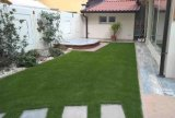 Populor Tencate Synthetic Grass for Landscaping (MSDQST-35)
