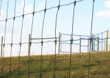 안전 정원 검술을%s 동물 또는 농장 철망사 담