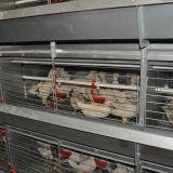 Het Systeem van de Kooien van de jonge kip voor Verkoop (het Frame van het Type van H)
