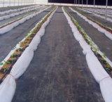geotextil tejido PP de tierra agrícola de la cubierta 120GSM