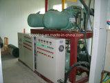 Centre de distribution de la chaîne du froid les aliments frais de stockage à froid de maintien
