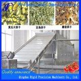 Großer kontinuierlicher Riemen-trocknende Maschine für entwässertes Obst und Gemüse