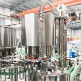 Machine d'embouteillage de remplissage de bouteilles liquide en verre en plastique automatique de l'eau minérale