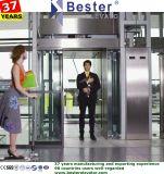 Passageiro/hotel/residencial/edifício/elevador da observação na decoração Home