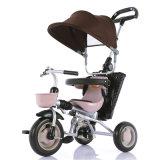 Езда младенца малышей трицикла младенца на трицикле автомобиля просто