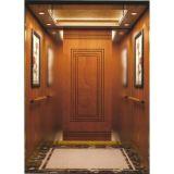 공장 직접 판매 니스 질 홈 엘리베이터