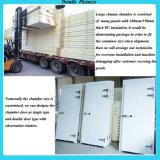 ASTM D2436 niedrige Temperatur-Feuchtigkeits-Lagerraum
