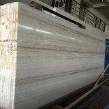 Laje de mármore branca da veia de madeira de cristal Polished