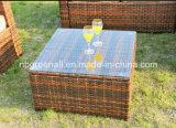 고리버들 세공 또는 등나무 옥외 안뜰 가구를 위한 최신 인기 상품 정원 소파