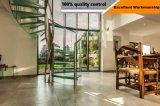 Escalera espiral de la pisada del vidrio Tempered del precio competitivo con el pasamano de cristal