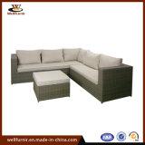 Отель вид в разрезе диван садовая мебель (WF053143)