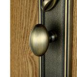 Stile classico antico della serratura di portello dell'entrata del mortasare
