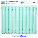 Powder professionale Coating Paint per Radiator