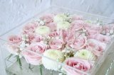 Bons preços de grosso da grande caixa fresca da flor do acrílico 36PCS Rosa