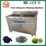 판매를 위한 학교와 대중음식점 사용 과일 초음파 세탁기