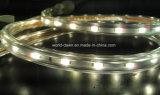 Alto indicatore luminoso della corda della striscia LED di lumen SMD5730 LED
