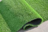 [أوف] مقاومة [35مّ] عشب اصطناعيّة لأنّ يرتّب, حديقة