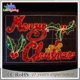 Lumière attrayante de décoration de lettre de Joyeux Noël de signe d'étalage de DEL
