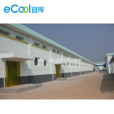 Armazém frio personalizado grande tamanho para a fábrica de processamento do Refrigeration das frutas dos vegetais
