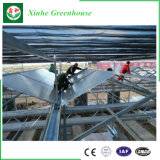 Recubierto de hueco Twinwall UV Láminas de policarbonato de gases de efecto