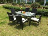 Vimine del patio del giardino/sofà del rattan impostato - mobilia esterna
