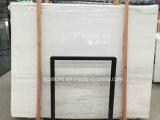Bianco Dolomite lajes de mármore branco